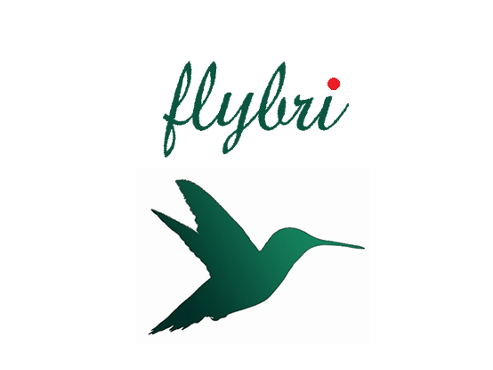 Flybri